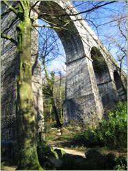 Treffry Tramways viaduct